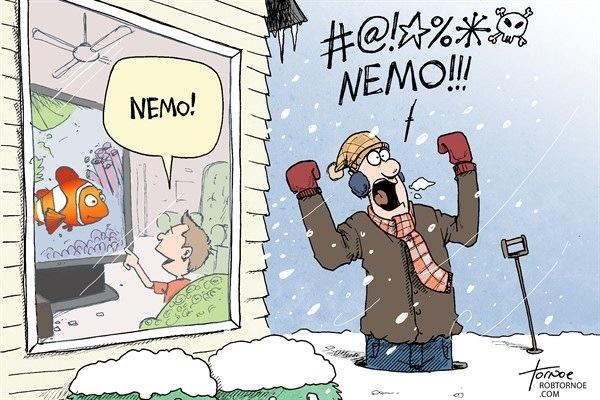 Reactions to Nemo